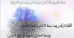 اليوم الثامن من شهر رمضان المبارك
